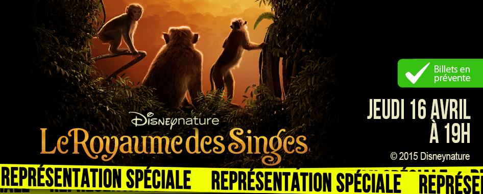 Représentation Spéciale: Le royaume des singes