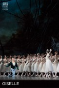 Ballet: Giselle [ The Royal Ballet ]