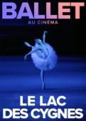 Ballet : Lac des cygnes